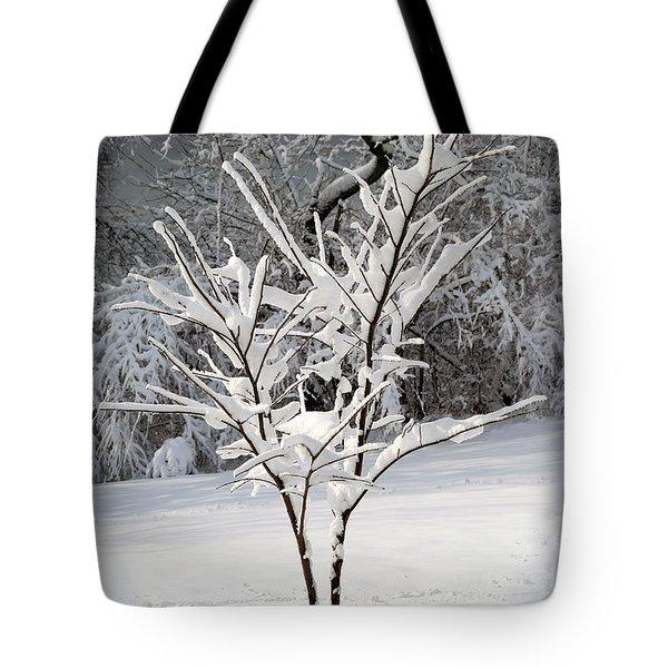 Little Snow Tree Tote Bag by Karen Adams