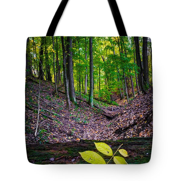Little Valley Tote Bag