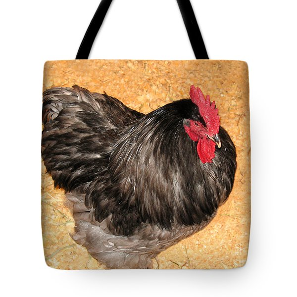 Tote Bag featuring the photograph Live Chicken - 2011 Houston Livestock Show by Connie Fox