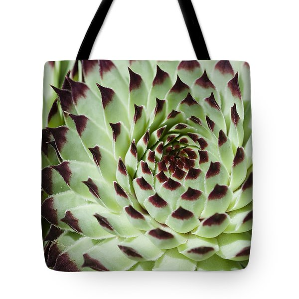 Live-for-ever Tote Bag by Lana Enderle