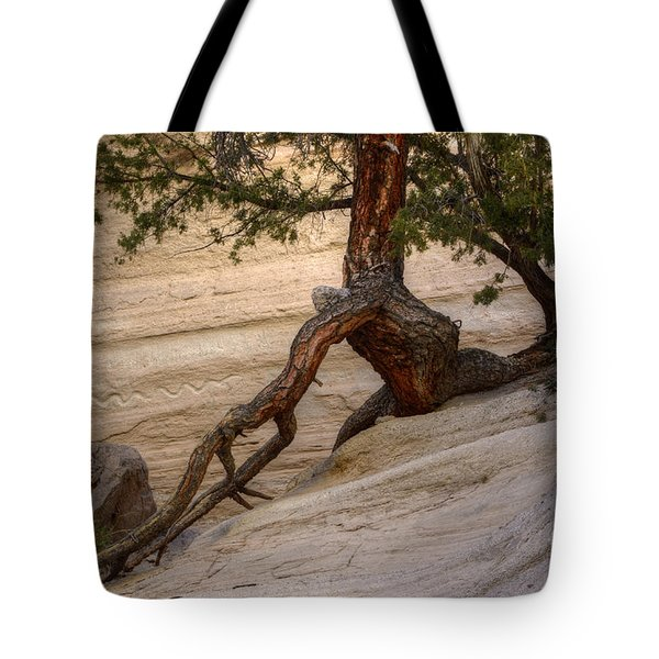 Living Gracefully Tote Bag by Bob Christopher