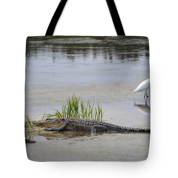 Tote Bag featuring the photograph Living In Harmony by Judith Morris