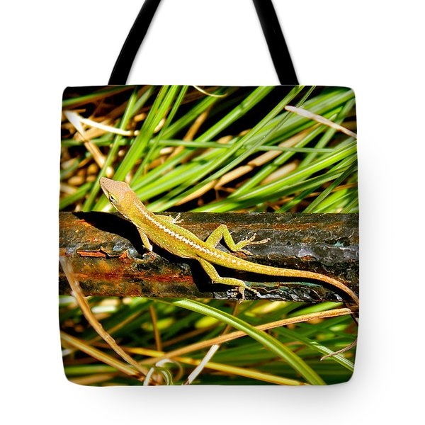 Tote Bag featuring the photograph Lizard by Cyril Maza