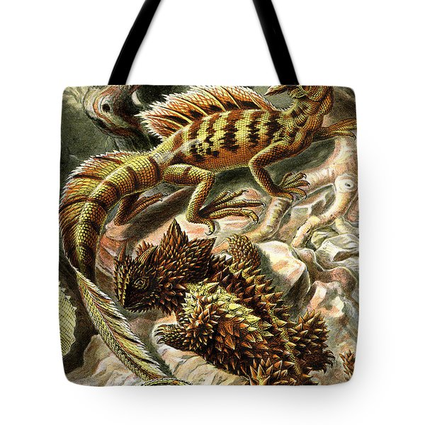 Lizard Detail II Tote Bag by Unknown
