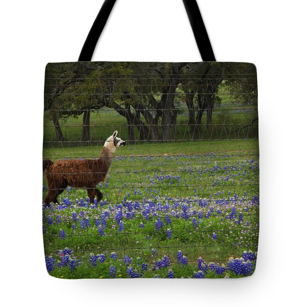 Tote Bag featuring the photograph Llama In Bluebonnets by Susan Rovira