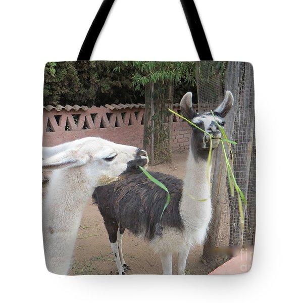 Llamas In Peru Tote Bag