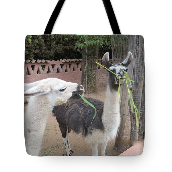 Llamas In Peru Tote Bag