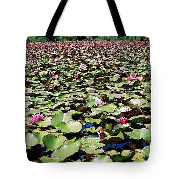 Tote Bag featuring the photograph Loads Of Lilies by Cathie Douglas