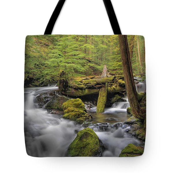 Log Jam Tote Bag by David Gn