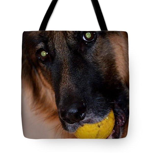Tote Bag featuring the photograph Loki by Cathy Shiflett