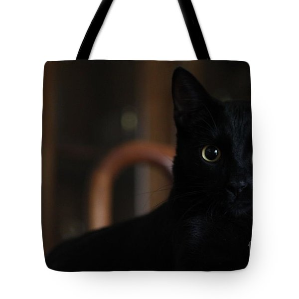 Loki The God Of Mischief  Tote Bag by Jennifer E Doll
