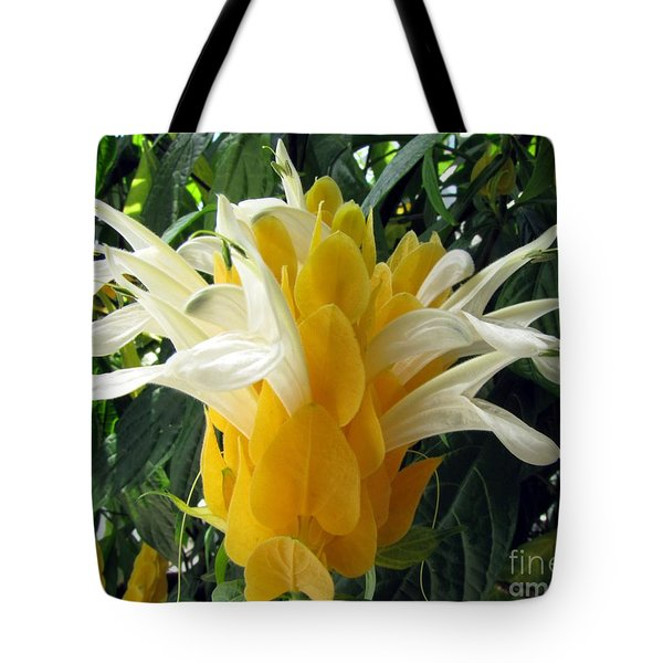 Lolliepop Plant Tote Bag by Jennifer Wheatley Wolf