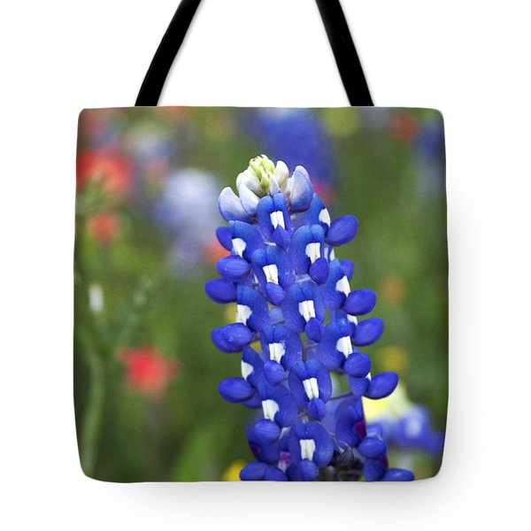 Lone Bluebonnet Tote Bag