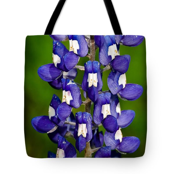 Tote Bag featuring the photograph Lone Bluebonnet by Dee Dee  Whittle