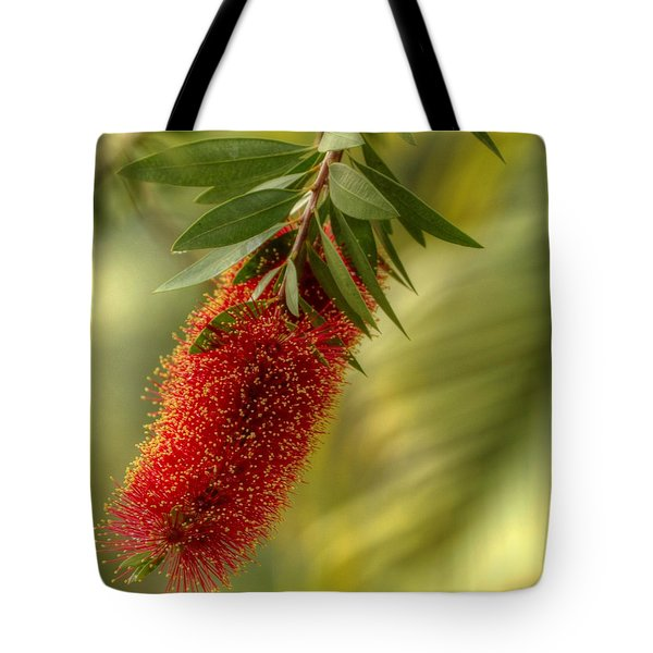 Lone Bottlebrush Tote Bag