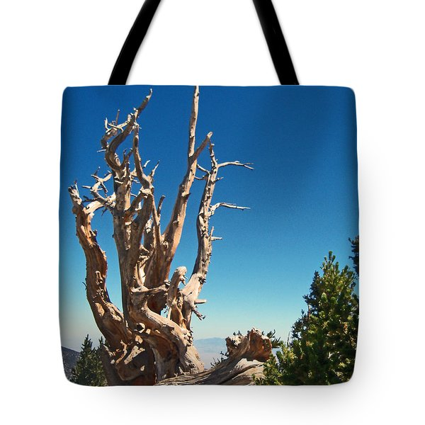 Tote Bag featuring the photograph Lone Bristlecone by Alan Socolik