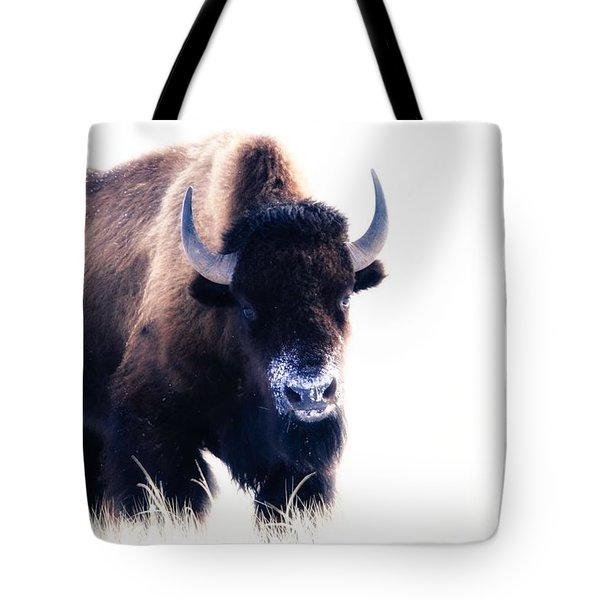 Lone Bull Tote Bag