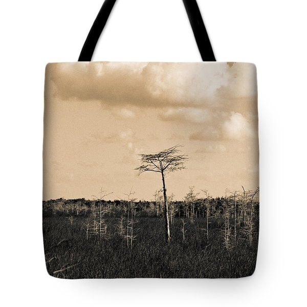 lone cypress III Tote Bag