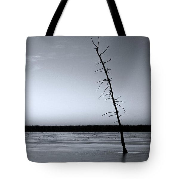 Tote Bag featuring the photograph Lone Cypress by Jane Eleanor Nicholas