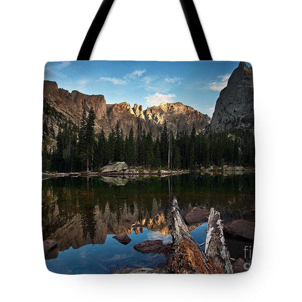 Lone Eagle Reflection Tote Bag by Steven Reed