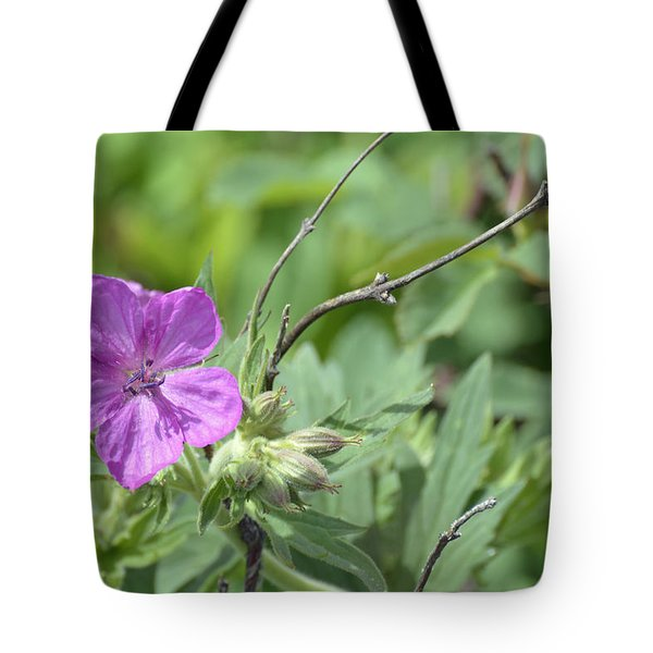 Lone Geranium In Yellowstone Tote Bag by Bruce Gourley