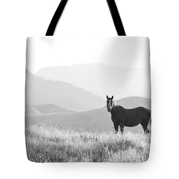 Lone Horse Tote Bag by B Christopher