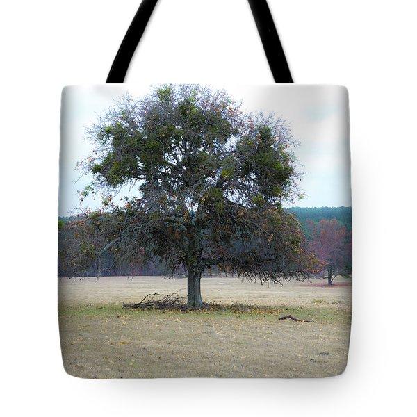 Lone Oak In Pasture Tote Bag