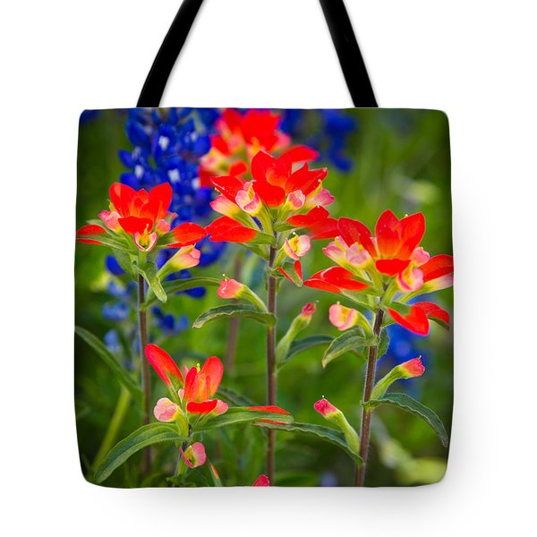 Lone Star Blooms Tote Bag by Inge Johnsson