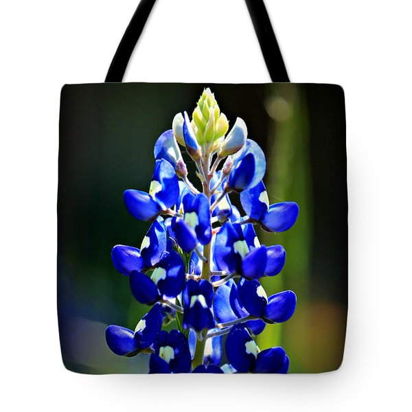 Lone Star Bluebonnet Tote Bag by Stephen Stookey