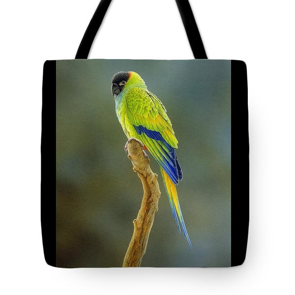 Lone Star - Nanday Conure Tote Bag