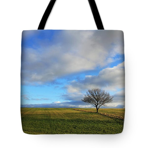 Lone Tree At Epsom Downs Uk Tote Bag