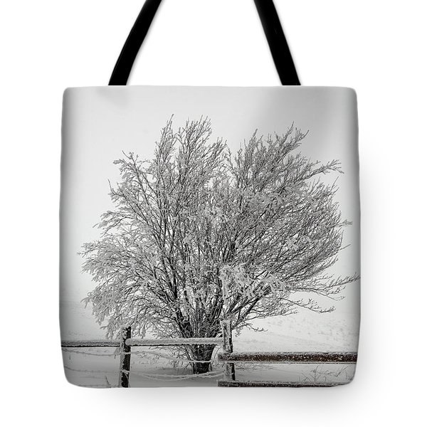 Lone Tree Tote Bag by John Haldane