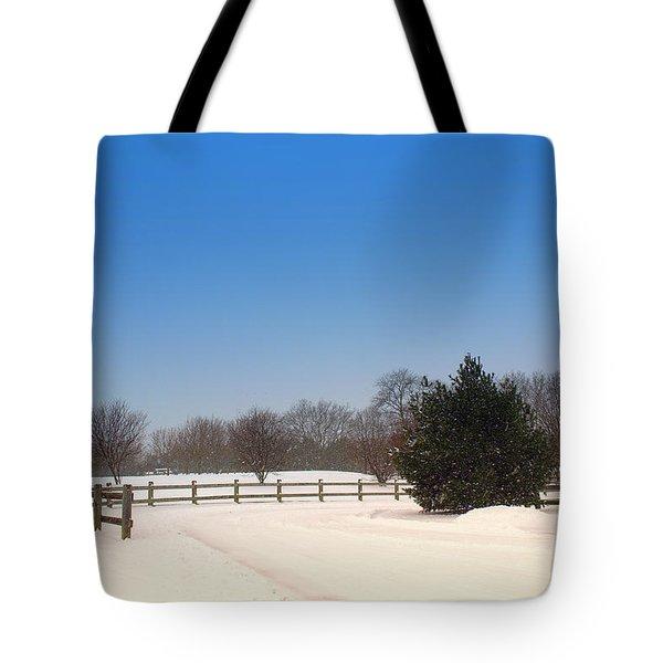 Lone Winter Evergreen  Tote Bag