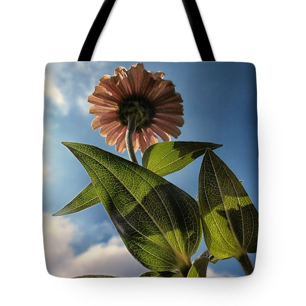 Lone Zinnia 01 Tote Bag by Thomas Woolworth