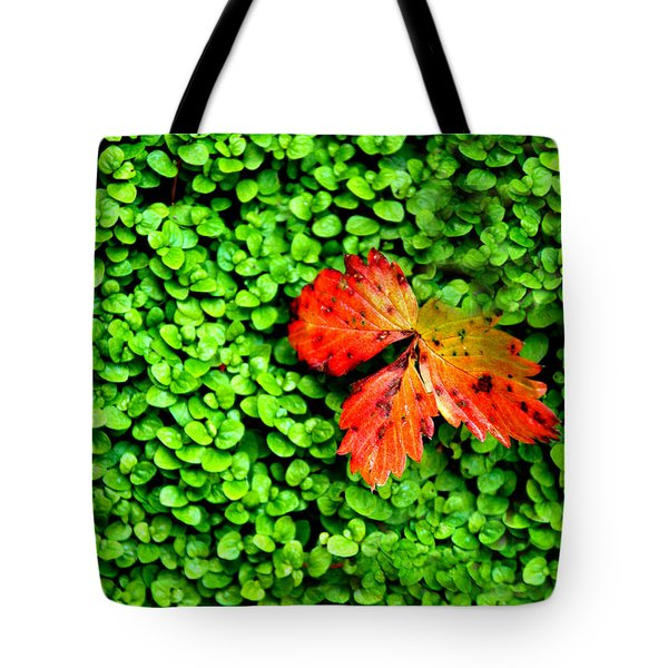 Tote Bag featuring the photograph Lonely Leaf by Charlie and Norma Brock