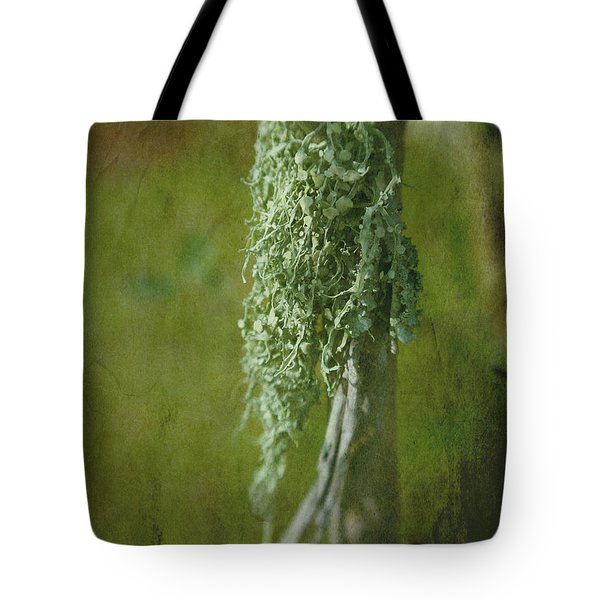Lonely Lichen Tote Bag by Judi Bagwell