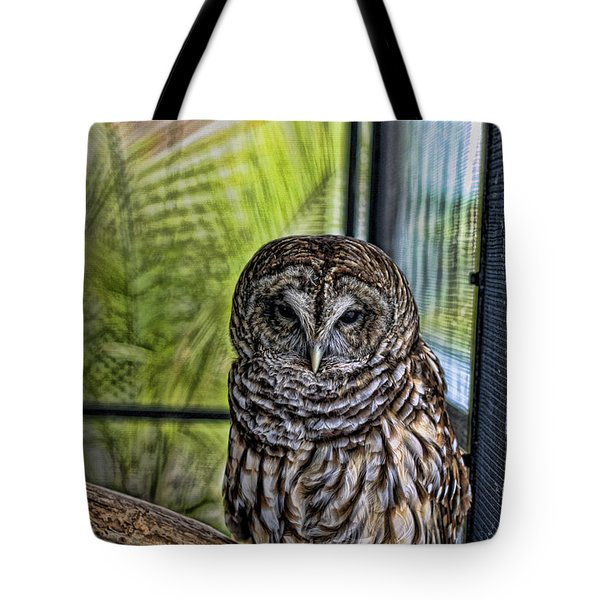 Lonely Owl Tote Bag