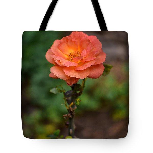 Lonely Rose Tote Bag