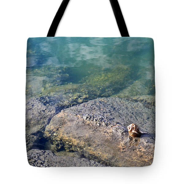 Lonely Shell Tote Bag by Patricia Greer