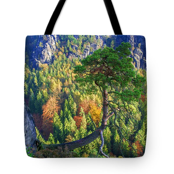 Lonely Tree In The Elbe Sandstone Mountains Tote Bag