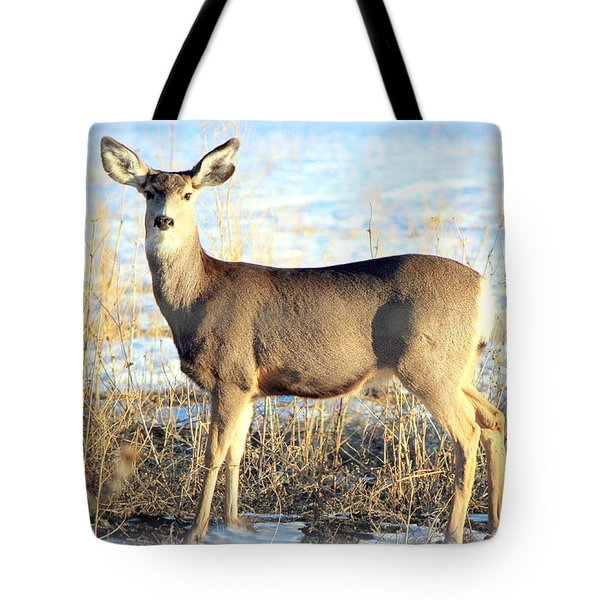 Tote Bag featuring the photograph Lonesome Doe Sunset by Barbara Chichester