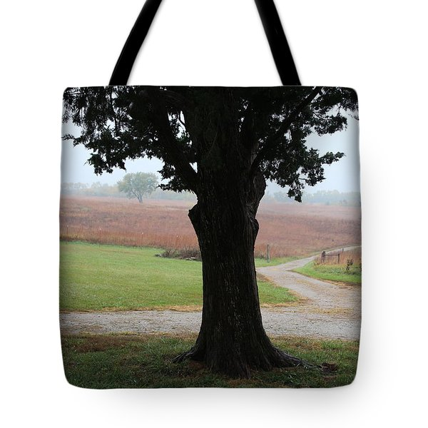 Tote Bag featuring the photograph Long Ago And Far Away by Elizabeth Sullivan