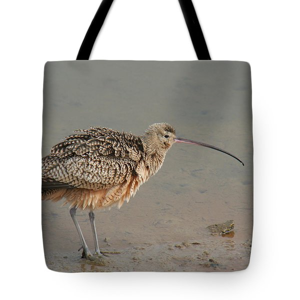 Tote Bag featuring the photograph Long-billed Curlew by Bob and Jan Shriner