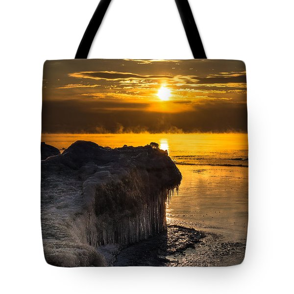 Long Cold Winter Tote Bag by James  Meyer