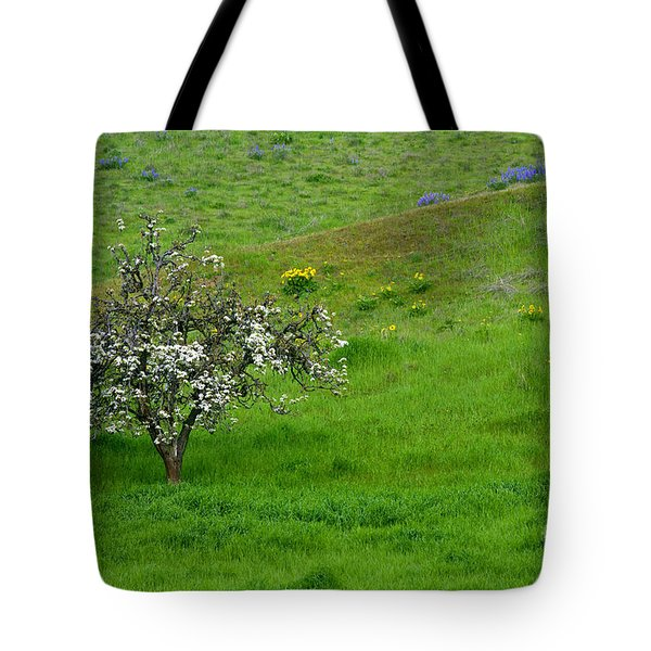 Long Forgotten Tote Bag by Mike  Dawson