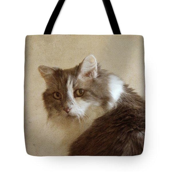 Long-haired Cat Portrait Tote Bag