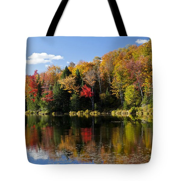 Long Pond Autumn Tote Bag by Alan L Graham