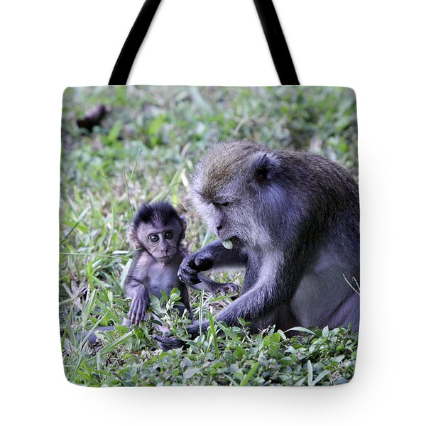 Tote Bag featuring the photograph Long Tailed Macaque Family by Shoal Hollingsworth