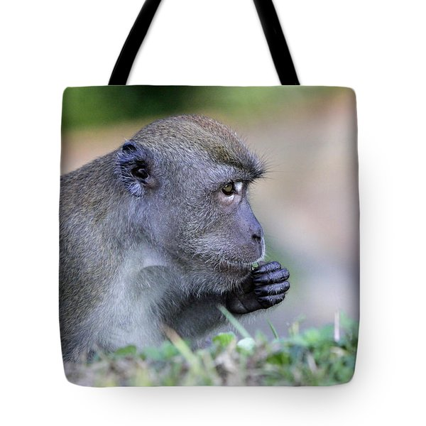 Tote Bag featuring the photograph Long Tailed Macaque Feeding by Shoal Hollingsworth