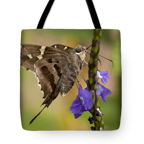 Tote Bag featuring the photograph Long-tailed Skipper Photo by Meg Rousher